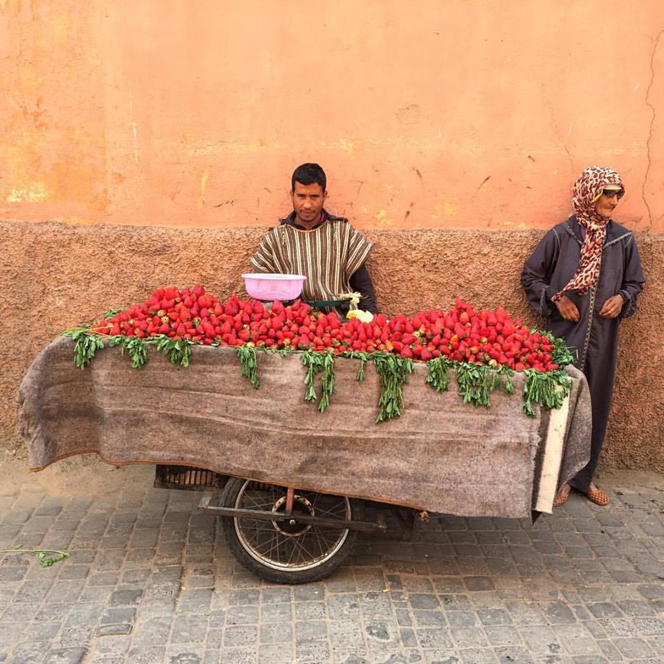 Marrakech, luogo mistico come la preghiera dell'alba