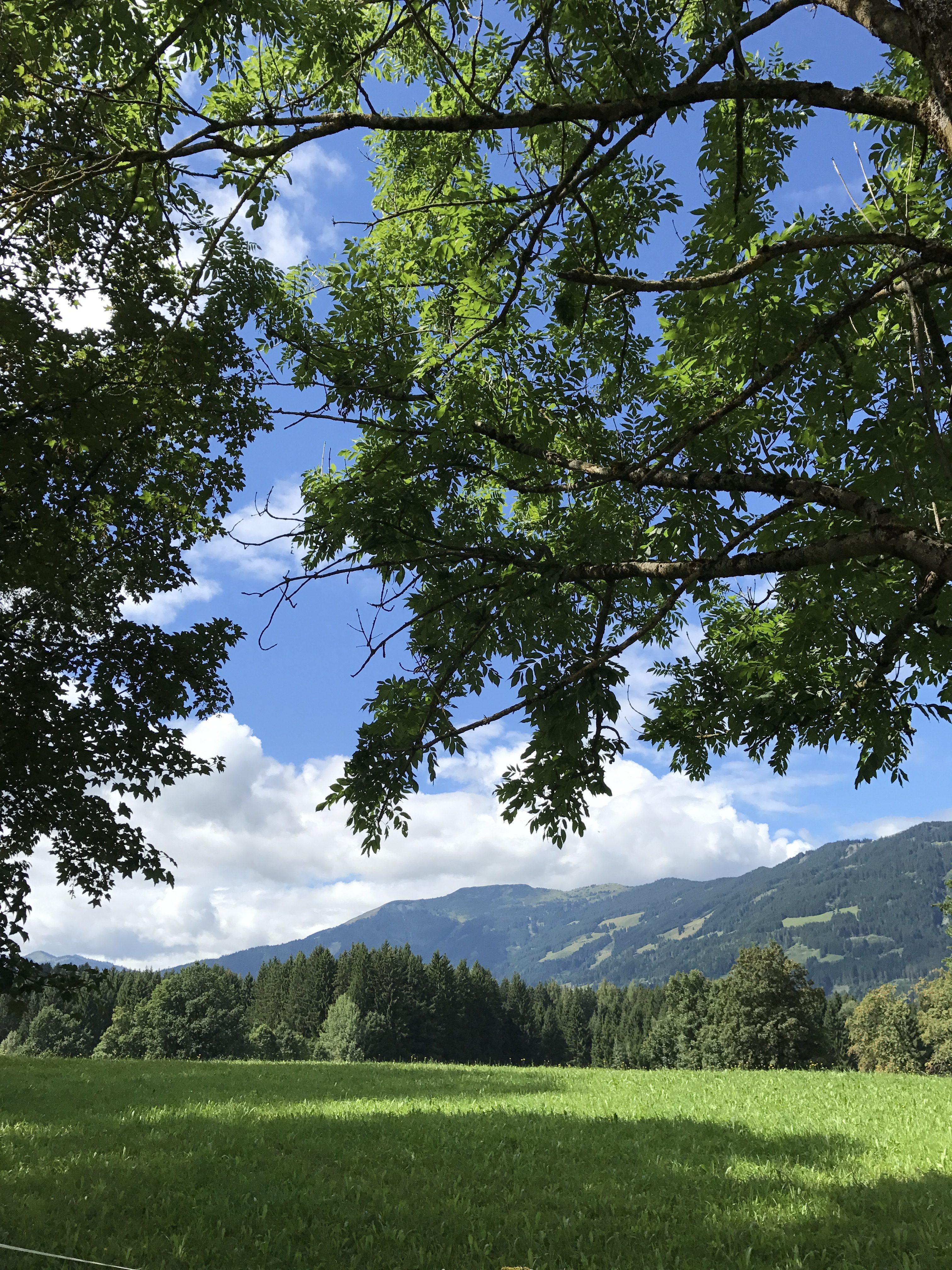 Saalfeld am Steinernen Meer: La parentesi necessaria che fu l'Austria