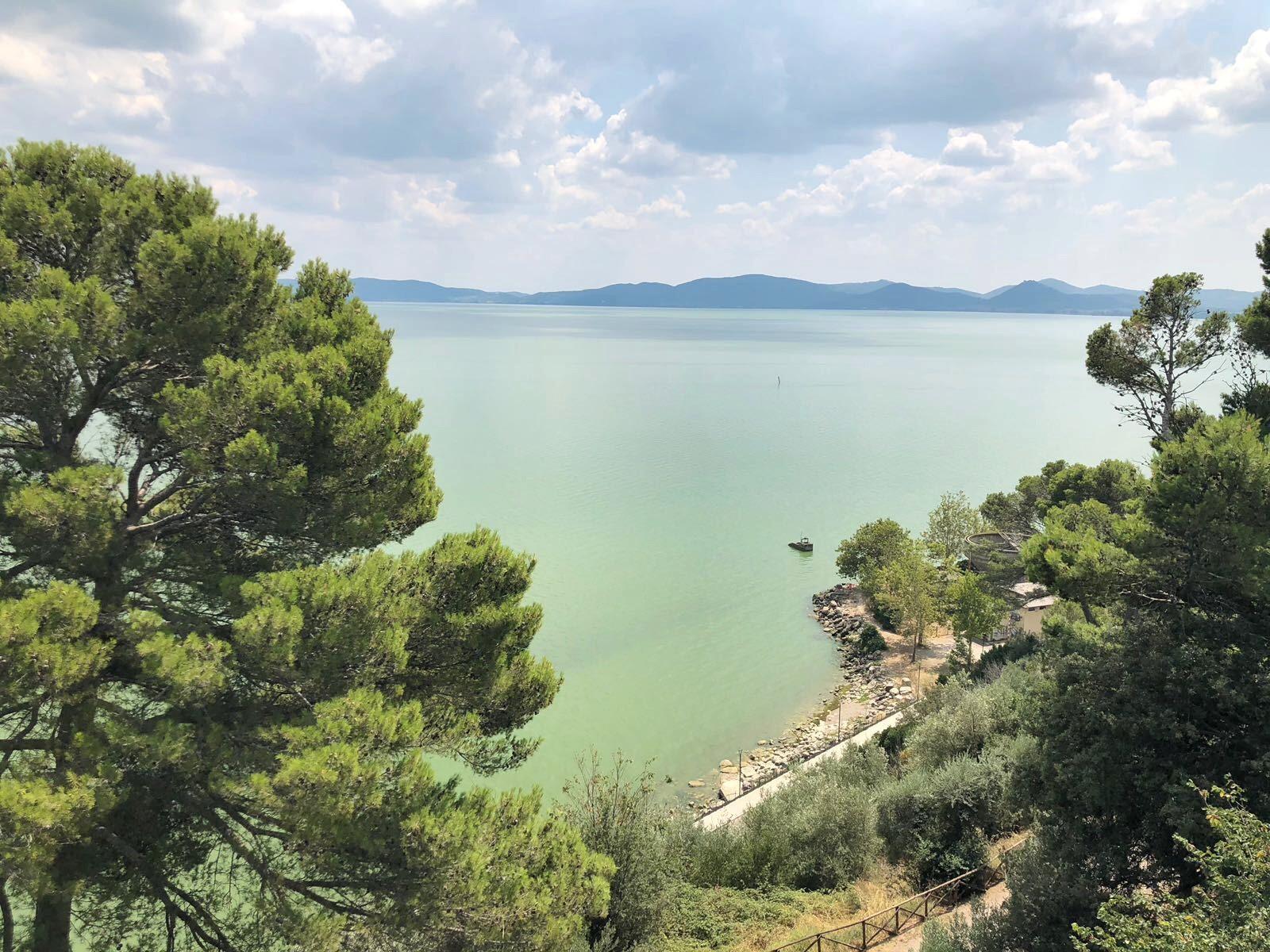 Castiglione del Lago: tra ulivi e aglione fresco