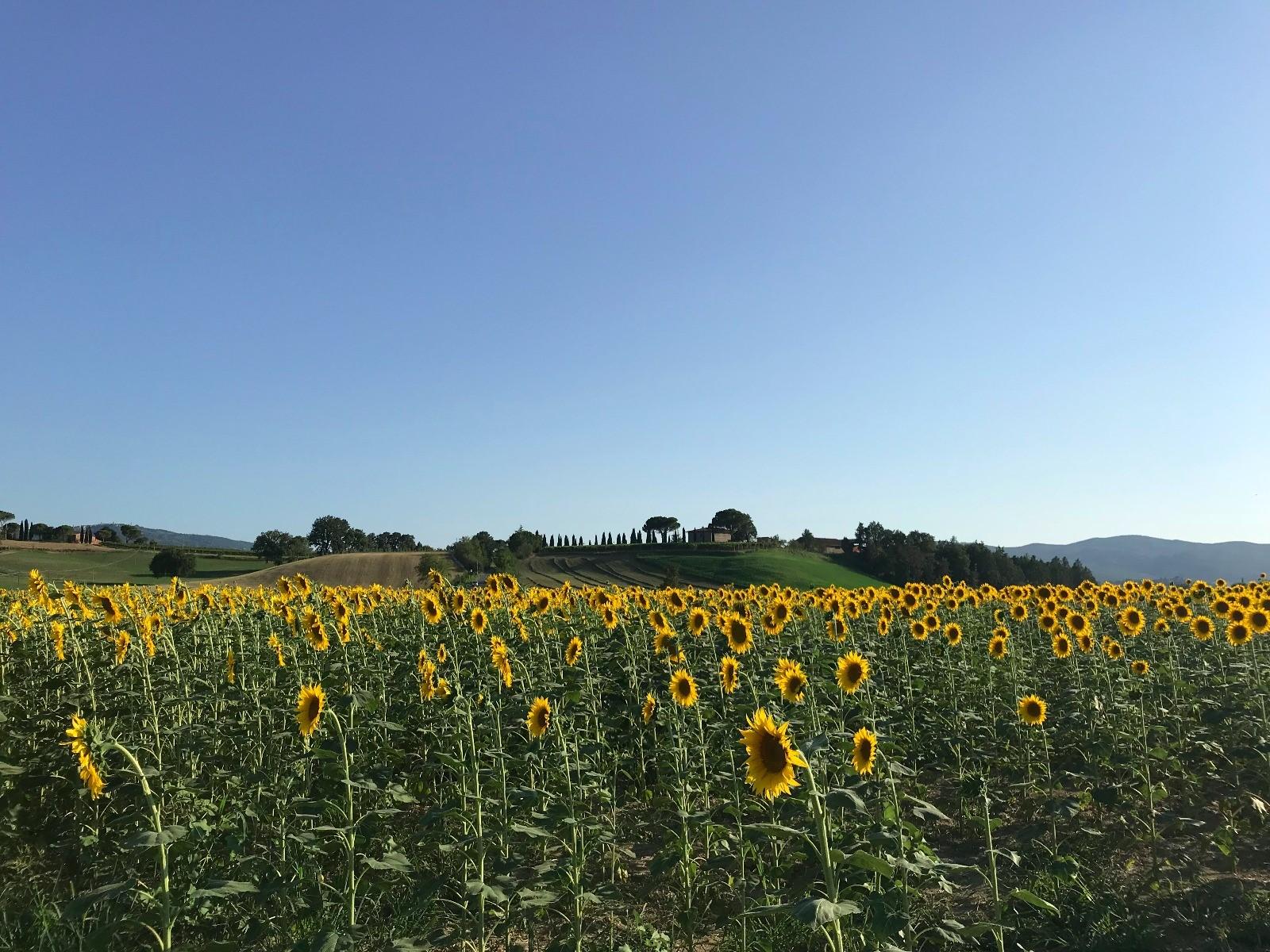San Quirico d'Orcia: sotto il sole della Toscana in una decappottabile anni 80